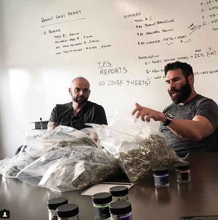 Миллионер Дэн Бильсериан показывает производство марихуаны